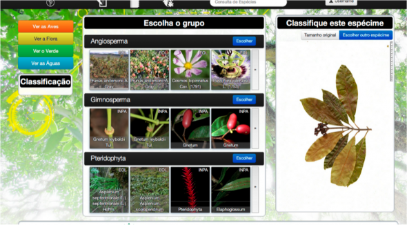 aBrazil IBM Wikiflora Screenshot