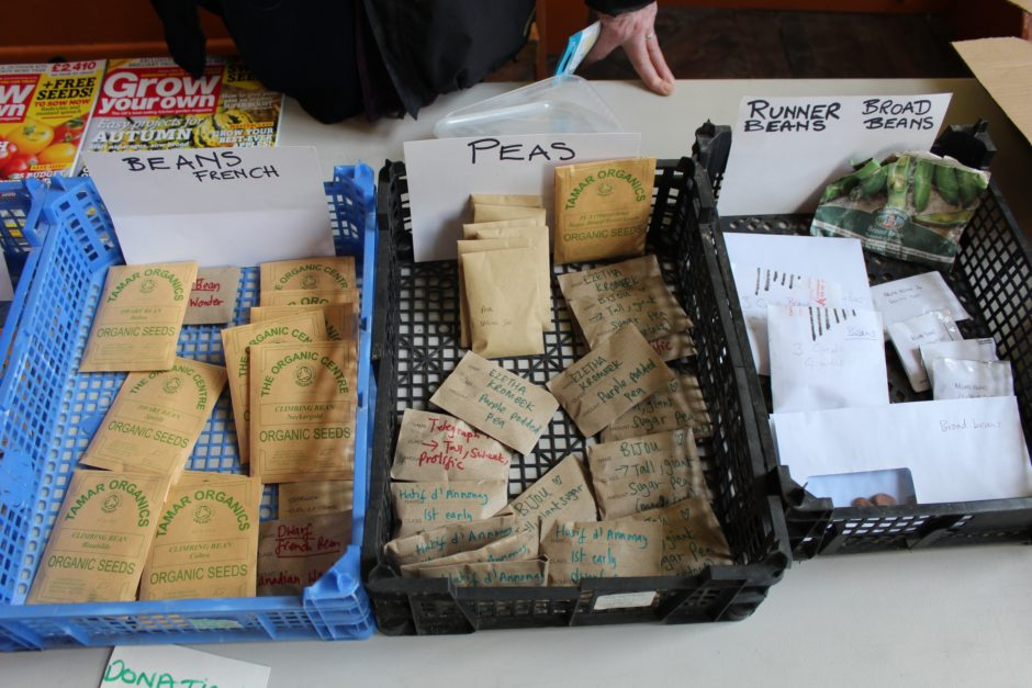 seed packets available at seed swap